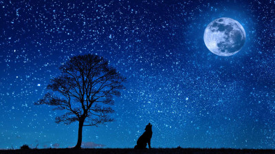 Hypnose bei Schlafstörungen oder Müdigkeit